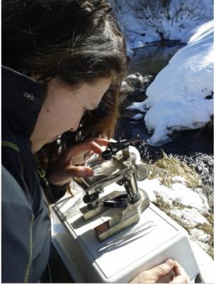 MUSE | La prestigiosa rivista internazionale PLOS One e il moscerino dei ghiacciai