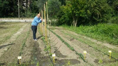 Agraria.org e Marco Salvaterra